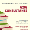 A2W Consultants
