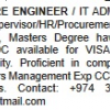 Indian Software Engineer Looking for Jobs