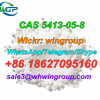 Factory supply high quality Bmk Ethyl 2-Phenylacetoacetate CAS 5413-05-8 with best price