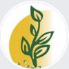 Biocarve Seeds