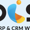 Manages warehouse asset with WMS Software in Qatar