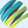 Custom .Net Development Company