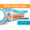 Website Development Company and Services in Jabalpur
